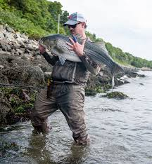 2019 Cape Cod Canal Cheat Sheet On The Water