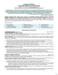 Big Data Sample Resume Big Data Project Manager Resume Best Of Devops Sample Resume 22