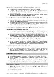 cv examples uk and worldwide cv example page 2
