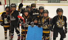 archived news valley youth hockey association turkey tourney blue division champs team smorol