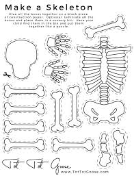 17cb68f0d94410c61d3b1d2e255d13b1 preschool curriculum preschool themes 25 best ideas about human body bones on pinterest body bones on connectives worksheet for grade 5