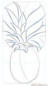 pineapple drawing. step 5 pineapple drawing