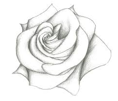 Small Picture Best 20 Flower drawing tumblr ideas on Pinterest How to draw