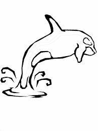 Small Picture Whale Coloring Pages