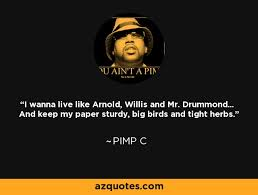 Pimp C Quotes Delectable Pimp C Quote I Wanna Live Like Arnold Willis And Mr Drummond