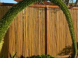 awesome bamboo fencing with plants and wood frame fence for gate home design ideas