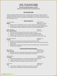 30 Inspirational Resume Profile Examples Sales Manager