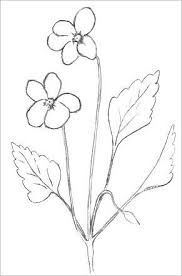 Small Picture Easy Flowers To Draw