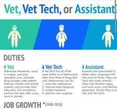 Veterinarian Technician Salary 441 Best Veterinary Medicine Images Vet Assistant