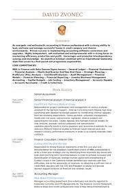 Download Senior Accountant Resume Ajrhinestonejewelry Com
