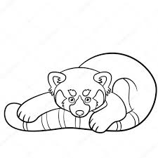 Kleurplaten Kleine Schattige Rode Panda Stockvector Ya Mayka