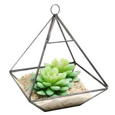 hanging clear glass prism air plant terrarium tabletop succulent planter t south africa