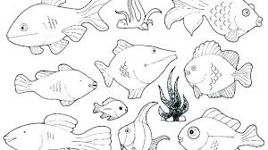 rainbow fish coloring pages page book free printable