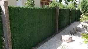 K Nstliche Hecke Sichtschutz Gartenwebshop At