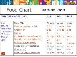 Food Chart For Babies Of 2 Years Part 1 Program Basics For New Child Care Programs Part 1