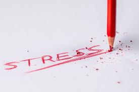 Decompress the Stress – Dating Intelligence