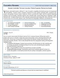 Executive Resume Template Word Stunning Free Resume Templates Executive Free Resume Templates Pinterest