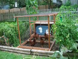 Home Vegetable Garden Design Enchanting Backyard Gardens Ideas ...