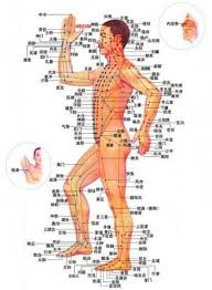 Pressure Point Charts Free Acupressure For Eyes 17 Acupressure Points To Improve