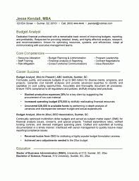 enchanting financial executive resume analyst sample statistical agreeable financial executive resume analyst sample