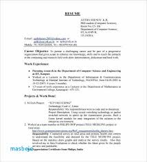 Downloadable Resume Format Custom Resume Summary Examples For Software Developer Software Developer