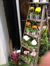 Creative Idea:Creative Brown Wooden Garden Ladder With Green Plants  Innovative Rustic Wood Ladder Garden