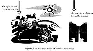 natural resources compilation of essays on natural resources  management of natural resources