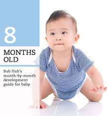 8 Month Baby Milestones Chart What Should My 8 Month Old Baby Be Doing 8 9 Month