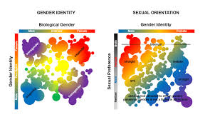 Between The Gender Lines The Science Of Transgender Identity