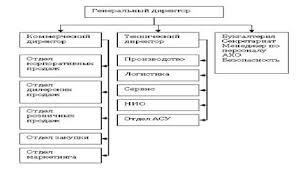 Реферат Стратегия и организационная структура предприятия  Рис 2 1 Линейно функциональная структура управления