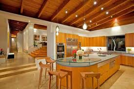 Small Picture Luxury Home Decorating Ideas Home Design
