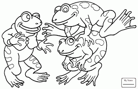 Small Picture African Dwarf Frog amphibian frogs coloring pages coloring7com