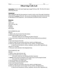 rubric assessment essay in science