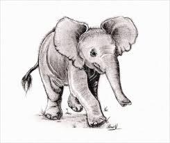 Baby Elephant Drawings Elephant Drawings 24 Free Printable Jpeg Png Format Download