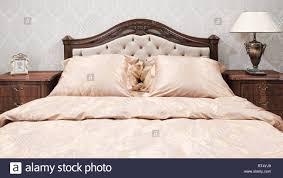 Klassische Einrichtung Schlafzimmer Weiss Und Rosa Stockfoto Bild