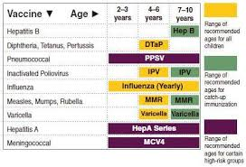 Vaccination Chart From Birth To 10 Years Recommended Vaccination Schedule From Two To Ten Years