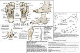Foot Reflexology And Acupuncture Chart
