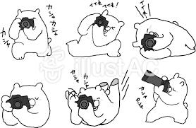 カメラの白クマさん 白黒イラスト No 1048406無料イラストなら