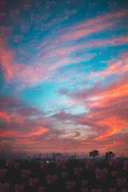 Cotton candy skies Image by Ava Benson