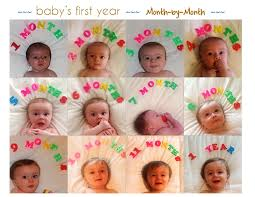 Joie De Vivre Babys First Year Monthly Photo Collage