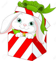 Image result for christmas bunny