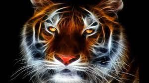 Abstract Tiger Wallpaper on WallpaperSafari