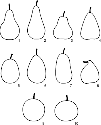 Pear Identification Chart Pears An Overview Sciencedirect Topics