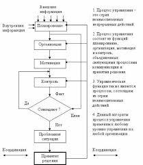 Функции Менеджмента Курсовая Функции Менеджмента