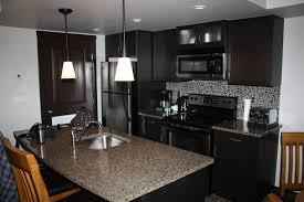 Condo Kitchen Remodel Condo Kitchen Designs For 2017