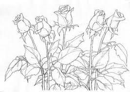 バラを描く 大人の塗絵 スケッチを楽しもう 塗り絵で癒し 風景画 花の絵