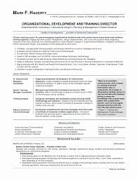 Resume Examples For Retail District Managers Elegant Image Store