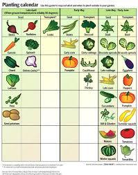 best garden vegetables. When To Plant Garden Vegetables Incredible Best Time Vegetable Spring Growing Home