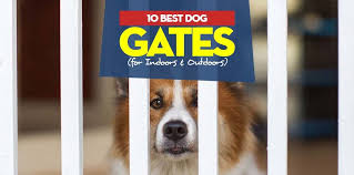top 10 best dog gates for indoors and outdoors