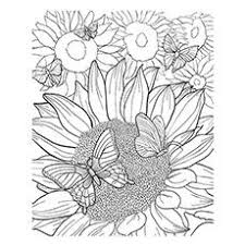 Small Picture 151 best Zonnebloemen images on Pinterest Sunflowers Clip art